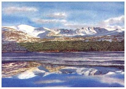 Cairngorms & Loch Morlich