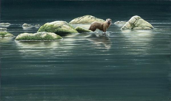 Otter - Islands