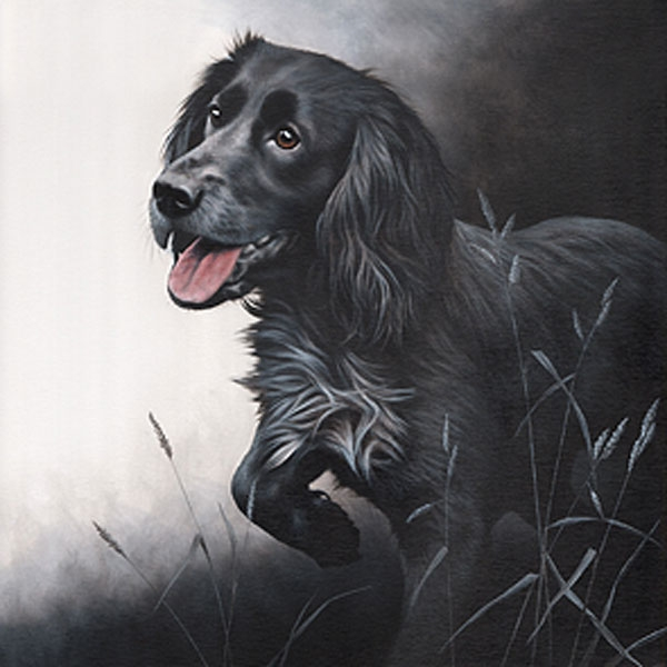 Field Sports - Cocker Spaniel Canvas