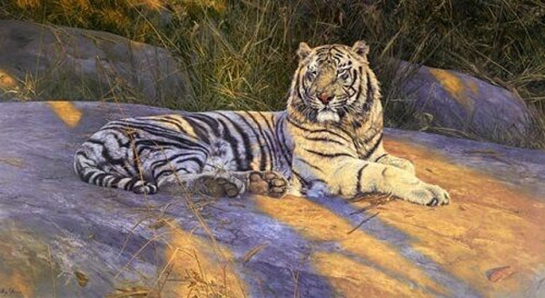 The Great White tiger