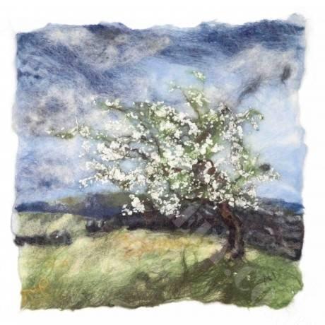 Spring Hawthorn