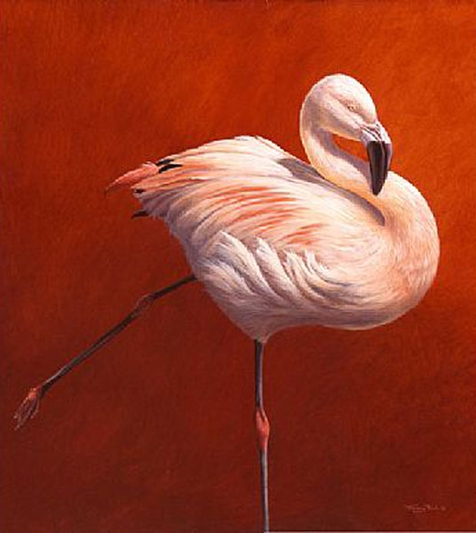 Flame Bird - Flamingo