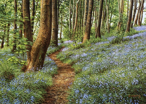 Bluebells,Haslost Wood 11
