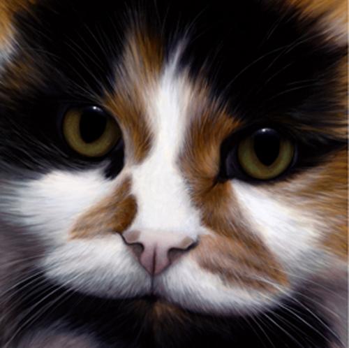 Larger Than Life - Cat